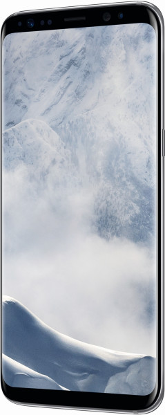 Samsung Galaxy S8 Silber 64GB LTE Android Smartphone ohne Simlcok 6 Zoll Display